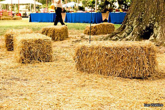 dukefreshmancookout2007007.jpg